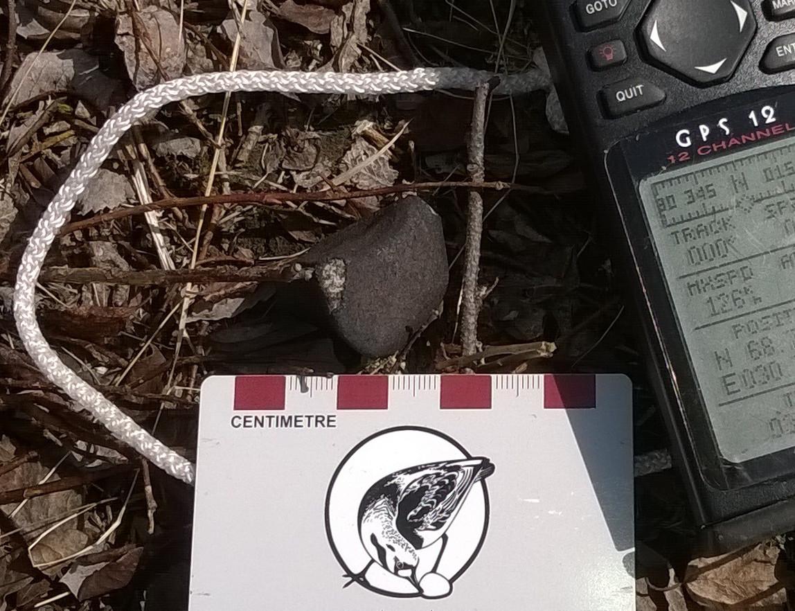 meteoritt